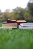 Porciones de libros en la hierba Imagen de archivo libre de regalías
