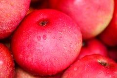 Porciones de manzana madura roja con descenso Imagenes de archivo