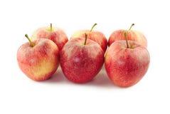 Porciones de manzanas rojas Imágenes de archivo libres de regalías