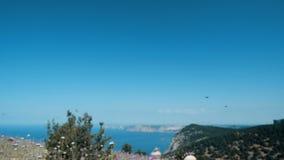 Porciones de mariposas en la cámara lenta sobre un campo contra paisaje hermoso del mar y de la montaña Movimientos de la cámara  almacen de metraje de vídeo