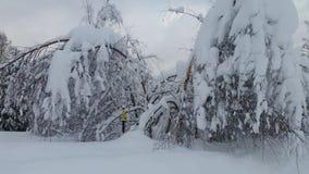 Porciones de nieve Imagenes de archivo