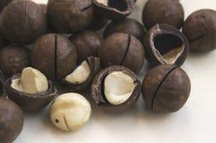 Porciones de nueces de macadamia Imágenes de archivo libres de regalías