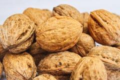 Porciones de nueces sanas en cáscaras Imagen de archivo libre de regalías