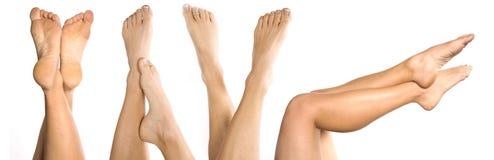 Porciones de piernas Foto de archivo libre de regalías