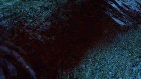 Porciones de sangre que fluyen en el río metrajes