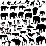 Porciones de siluetas animales Fotos de archivo libres de regalías