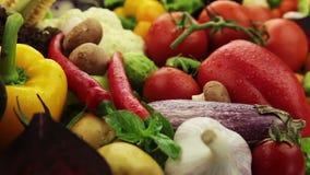 Porciones de verduras almacen de video