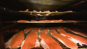 Porciones que fuman de salmones almacen de metraje de vídeo