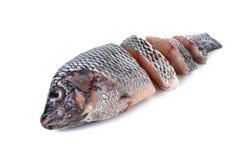 Porcja świeża Tilapia ryba na bielu Zdjęcie Stock