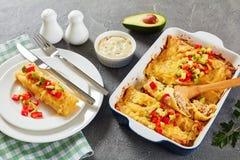 Porcja enchilada na talerzu obrazy royalty free