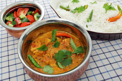 Porcja kurczak i pomidorowy curry Zdjęcie Royalty Free