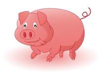 Porco Ilustração do Vetor