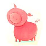 Porco abstrato Fotografia de Stock