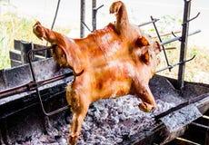 porco assado Imagem de Stock
