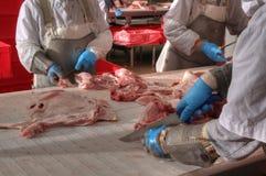 Porco che elabora industria alimentare della carne Fotografia Stock