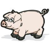 Porco com trajeto de grampeamento Foto de Stock Royalty Free