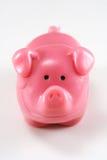 Porco cor-de-rosa Imagens de Stock Royalty Free
