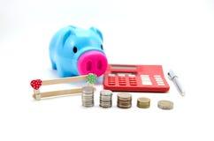 Porco da economia com dinheiro e calculadora Foto de Stock
