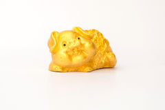 porco da sorte afortunada e boa Fotos de Stock Royalty Free
