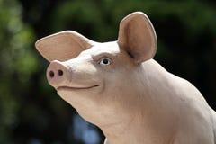 Porco de sorriso Imagens de Stock Royalty Free