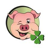 Porco do dia de St Patrick s com trevo Fotos de Stock