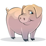 Porco dos desenhos animados Fotos de Stock Royalty Free