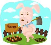 Porco dos desenhos animados que faz o trabalho da exploração agrícola Fotos de Stock