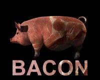 Porco e bacon   Foto de Stock