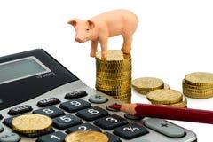 Porco e calcolatore Fotografie Stock Libere da Diritti