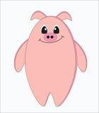 Porco estranho engraçado Foto de Stock