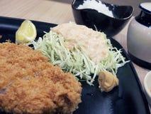Porco fritto di stile giapponese Immagine Stock Libera da Diritti