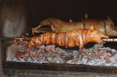 Porco grelhado Porco Roasted fotografia de stock
