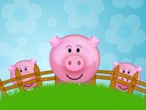 Porco na exploração agrícola Fotos de Stock Royalty Free