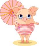 Porco na praia ilustração royalty free