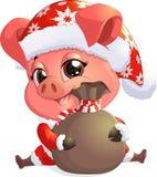 Porco no traje de Santa Fotografia de Stock Royalty Free