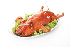 Porco Roasted foto de stock
