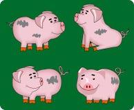 Porcos ilustração stock