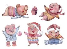 Porcos bonitos ajustados Caráteres engraçados do leitão dos desenhos animados Ano novo feliz Símbolo chinês dos 2019 anos ilustração royalty free