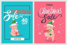 Porcos da venda do Natal e leitão finais, chapéus do inverno ilustração royalty free