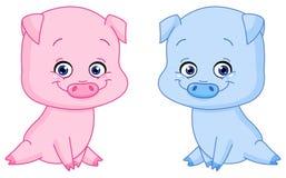 Porcos do bebê Imagem de Stock