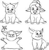 Porcos do Ute isolados no fundo branco ilustração stock