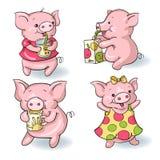 Porcos dos desenhos animados Imagem de Stock