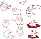 Porcos engraçados dos desenhos animados que têm o divertimento, jogando e enganando ao redor Imagem de Stock