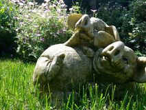 Porcs dans un jardin Image stock