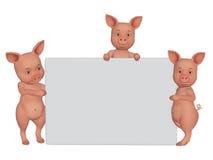 porcs de la bande dessinée 3d avec un cadre vide Image stock