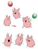 Porcs drôles réglés Images libres de droits