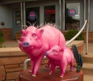 Porcs roses artistiques devant des affaires de visite dans le sedona Photographie stock