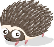 Porcupine. Illustration of a prickly back porcupine Stock Photo