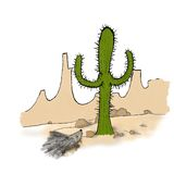 Porcupine and cactus in the desert Royalty Free Stock Photos