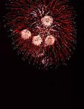 Porcupine fireworks. Red fireworks display reminiscent of porcupine quills. Shot with Pentax SLR 35mm film camera, 70-210mm zoom lens, Kodachrome 25 film, long Royalty Free Stock Photo